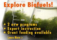 WM048392-Biofuels